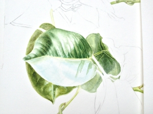 A leaf or two in progress.