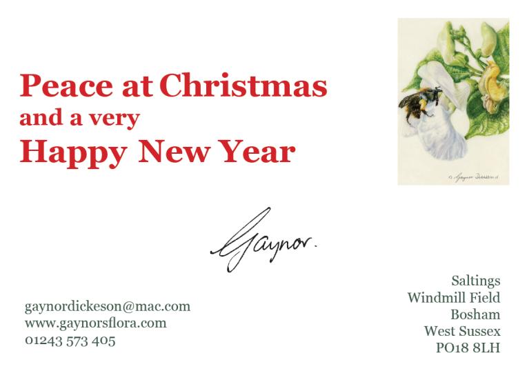 Gaynor Xmas card 2014