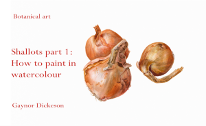 How to paint Shallots in watercolour - pt 1